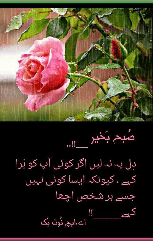 السلام عليكم ورحمة الله وبركاته ص بح ب خیر اے ایچ ن وٹ بک Good Morning Images Good Morning Greetings Morning Greetings Quotes