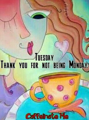 Tuesday thank you for not being Monday