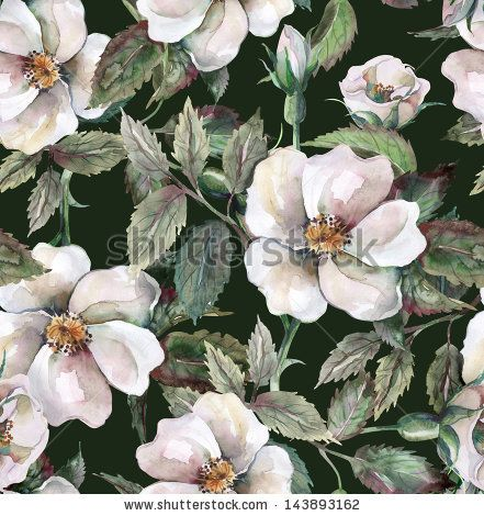 Wild Roses Seamless Pattern - stock photo