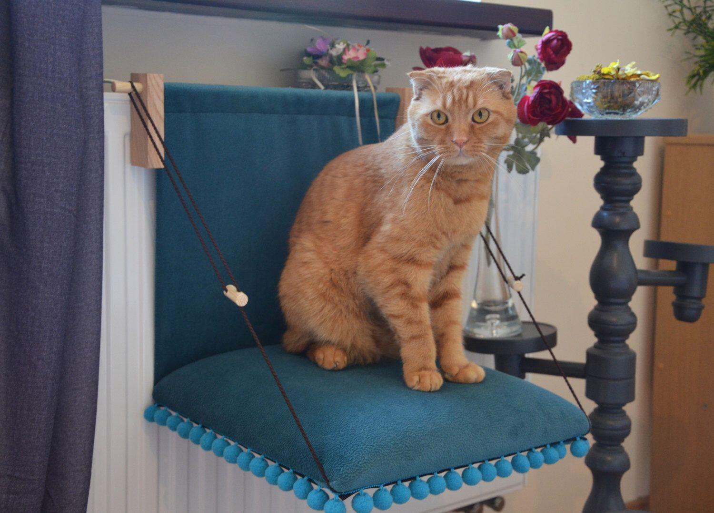 cat hammock cat bed cat pillow cat furniture radiator hammock radiator cat hammock cat bed cat pillow cat furniture radiator hammock      rh   pinterest