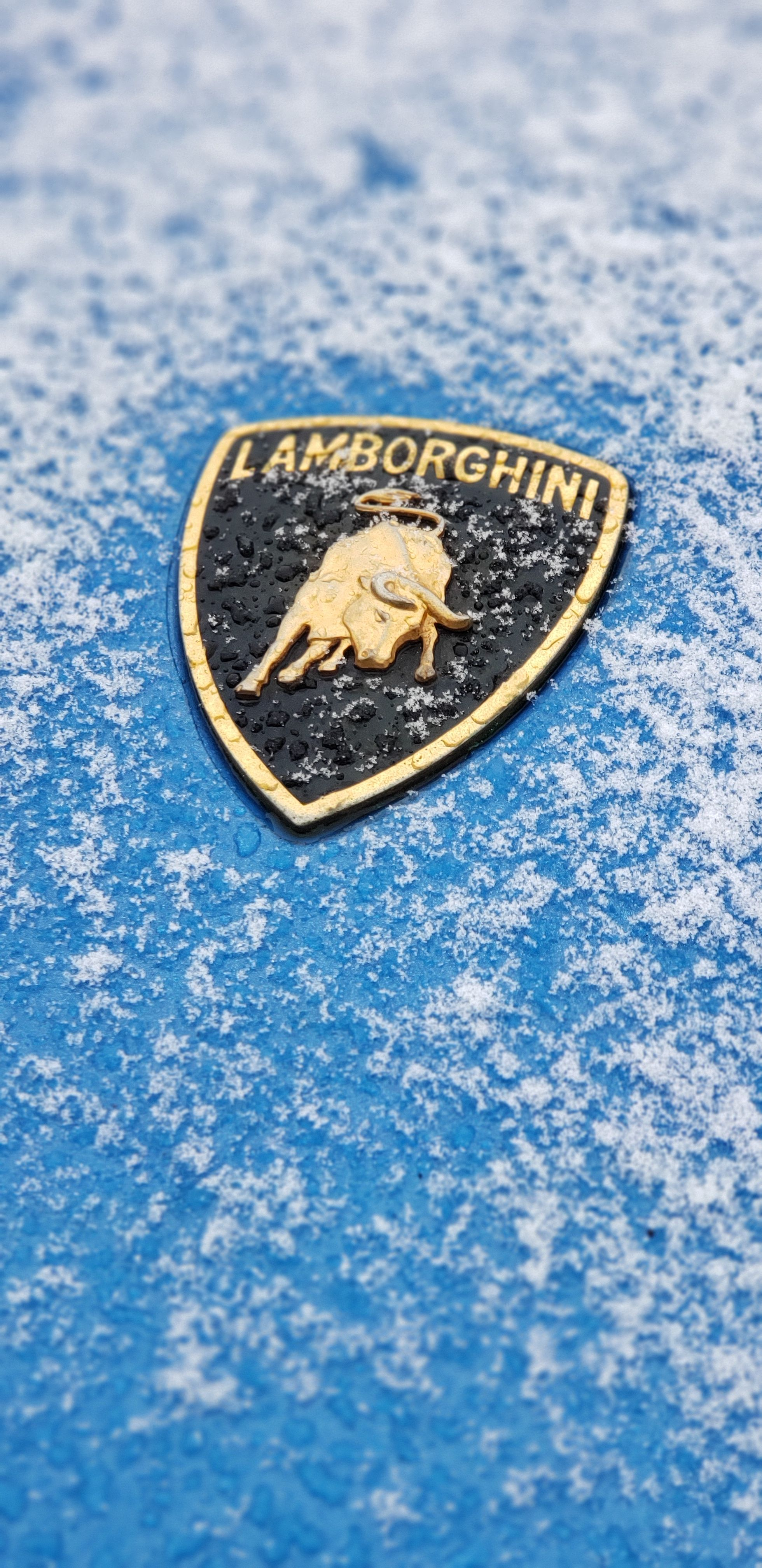 Snow Storm Came In Fast And It Was Time To Get The Lamborghini