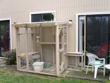 Pleasant Screened Cat Enclosures How To Constructed Off Back Home Interior And Landscaping Analalmasignezvosmurscom