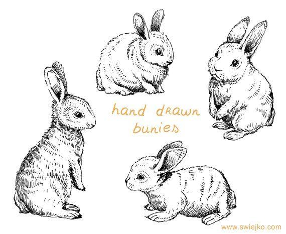 Digital Clipart Doodle Clipart Easter Bunnies Bunny Clipart | Etsy in 2021 | Digital clip art, Bunny drawing, Bunny art