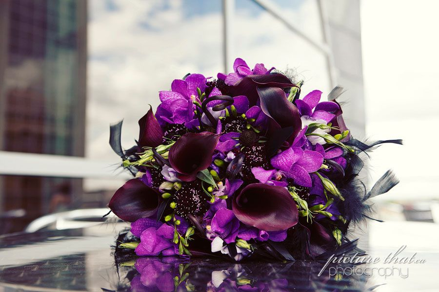 Lovely deep purples.