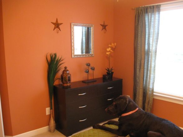 Pumpkin spice paint color for the home pinterest for Pumpkin spice paint living room