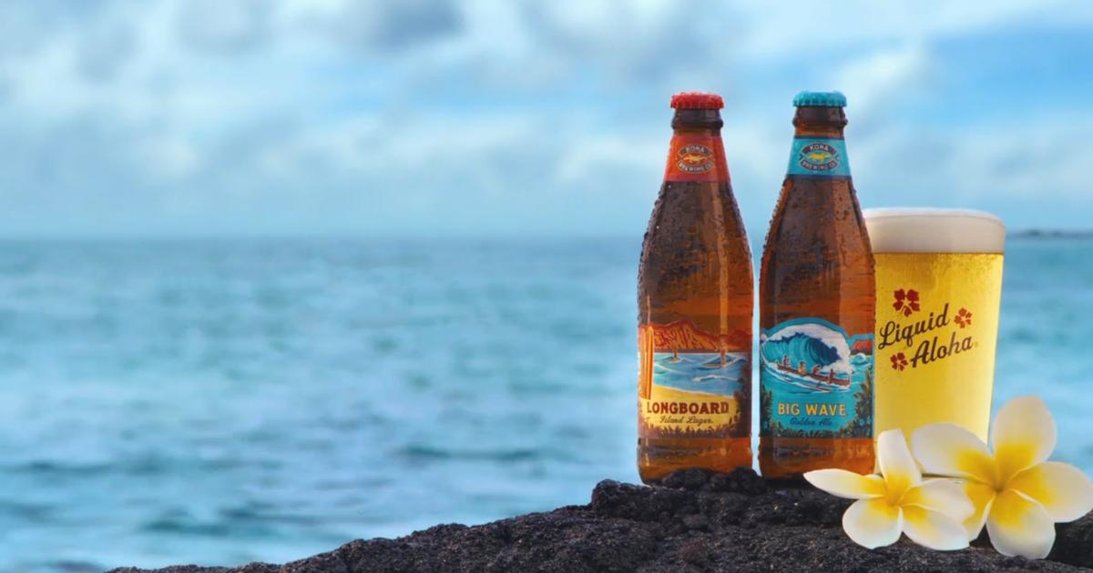 42+ Craft brew alliance anheuser busch information