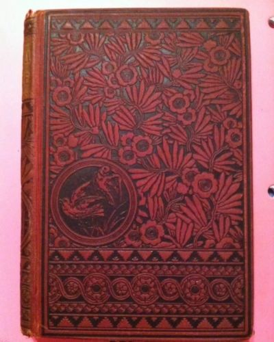 This is my vintage copy of Dr. Jekyll and Mr Hyde. It was printed in 1887!!! Such a gorgeous cover.