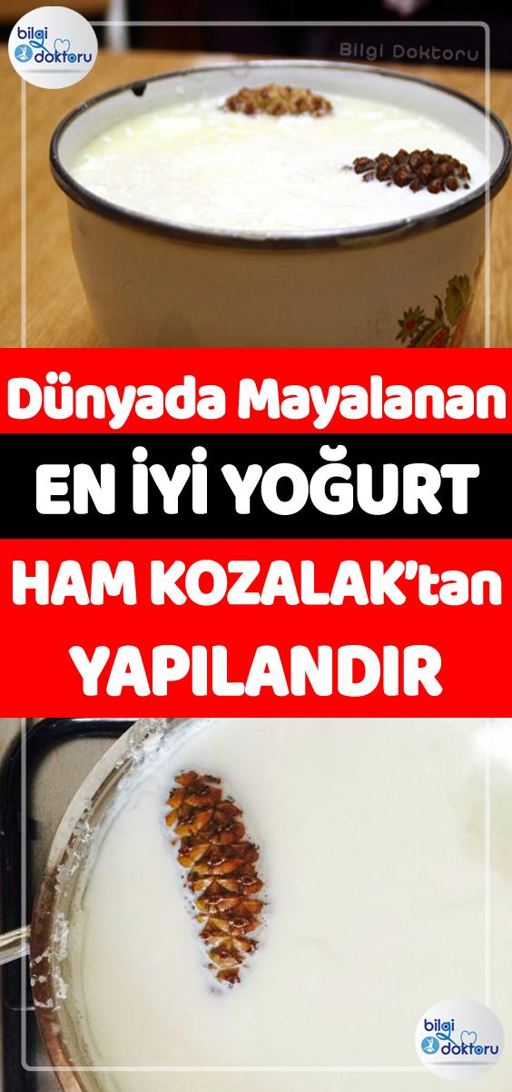 Katkisiz Dogal Ev Yogurdu Gibisi Var Mi Bir De Uzerinde Kalin Mi Kalin Kaymagi Ile Tadindan Yenmez Food Turkish Recipes Favorite Recipes
