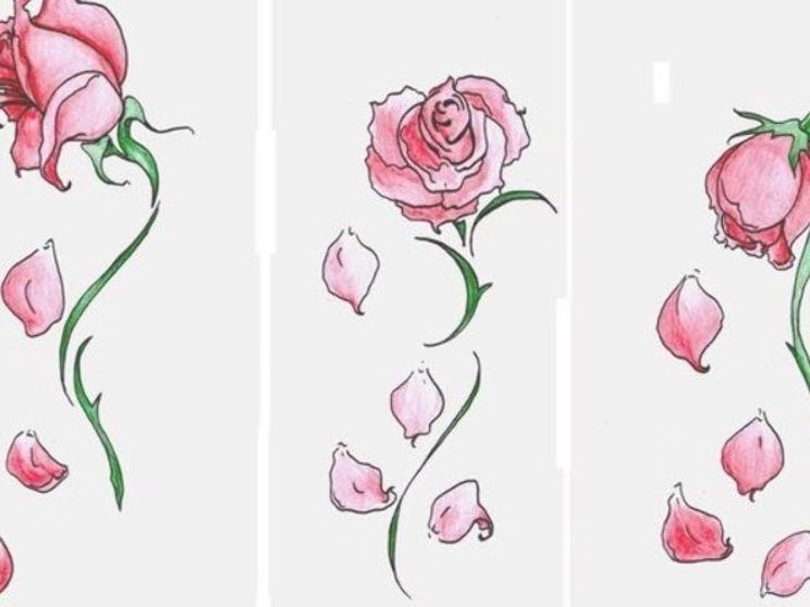 You Find A Beautiful Rose Then Noticed Its Petals Falling Off You Roses Drawing Rose Sketch Rose Tattoo
