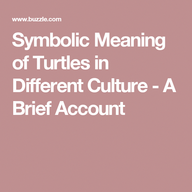 Symbolic Meaning of Turtles in Different Culture A Brief