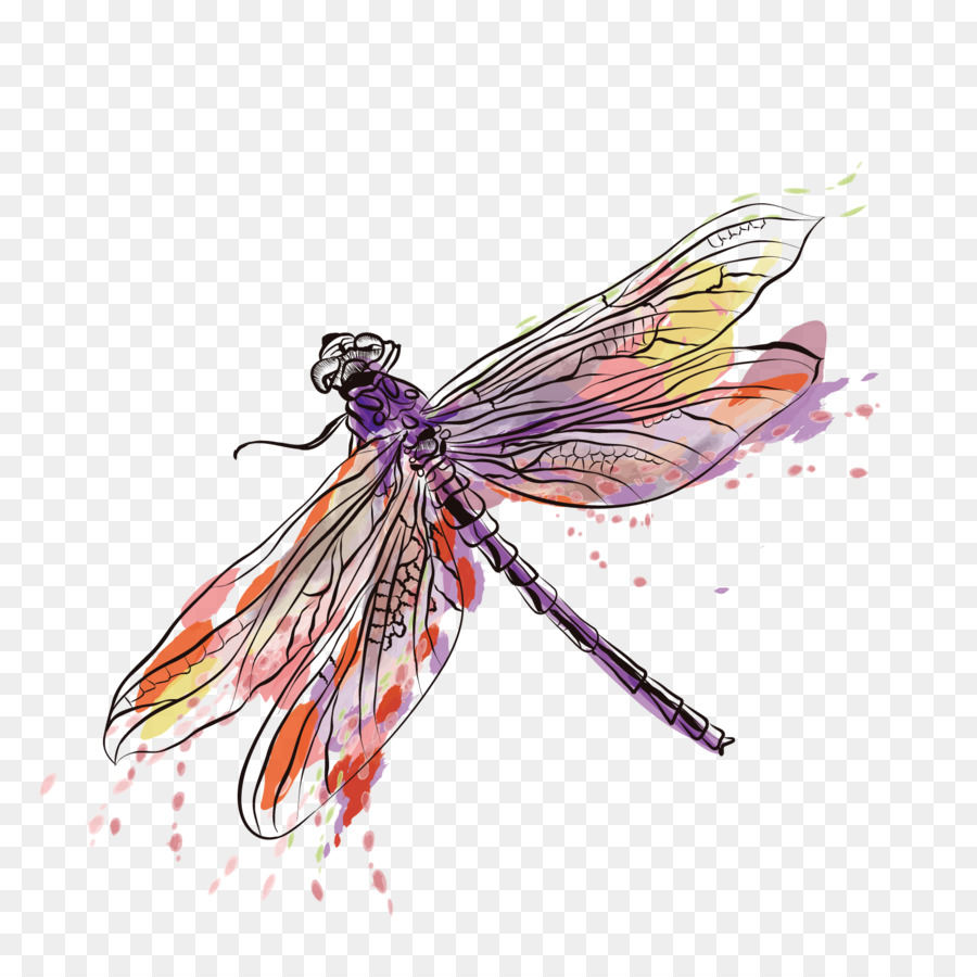 Insect Euclidean Vector Dragonfly Vector Ink Dragonfly Png Dragonfly Wall Art Png Dragonfly