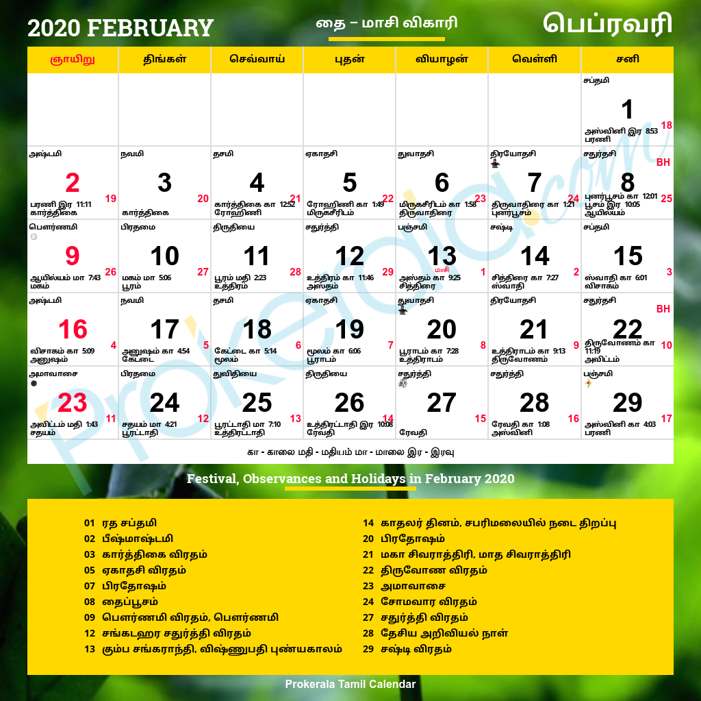 Tamil Calendar 2020 with Festivals in 2020 | Calendar 2020, Tamil
