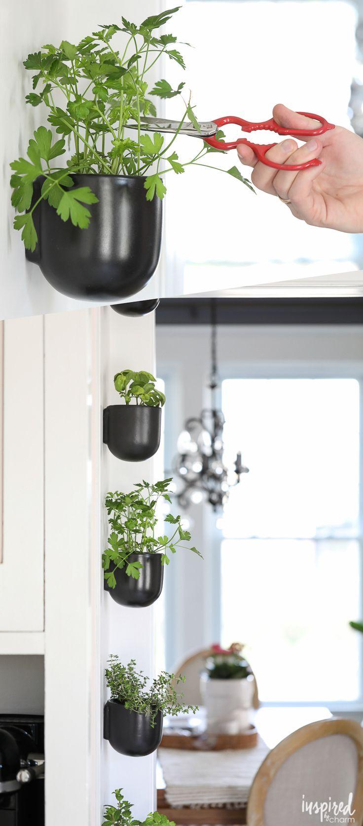 DIY Kitchen Herb Garden   Vertical Wall Garden   Hanging Wall Pots   Modern  Herb Garden