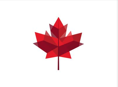 What I Want More With Images Maple Leaf Tattoos Canadian Tattoo Maple Leaf Logo