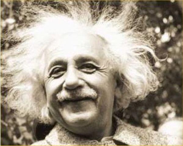 Image result for einstein hair