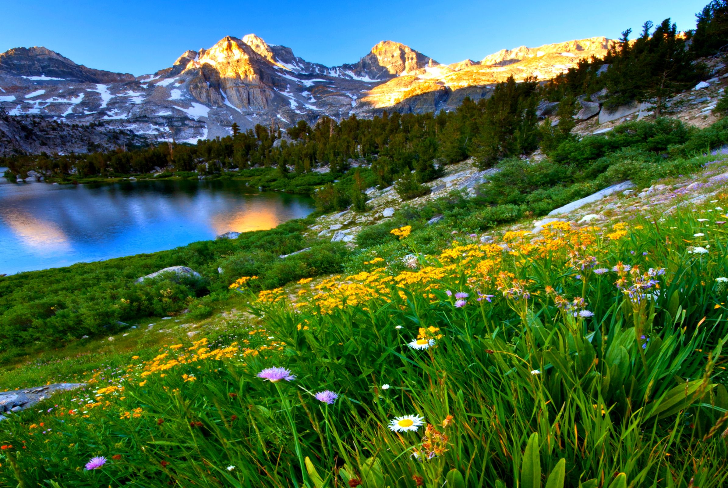 Earth Spring Hd Wallpaper Background Image Wallpaper Cart Mountain Landscape Spring Wallpaper Spring Pictures