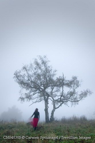 Trevillion Images - woman-by-tree-in-fog