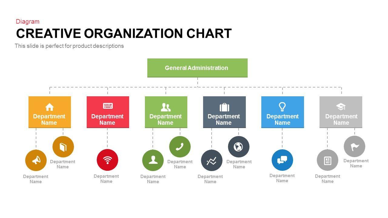 Creative Organization Chart  Slidebazaar  Indesign Class