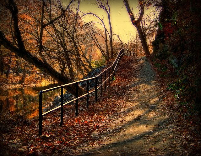 Wissahickon trail, Philadelphia