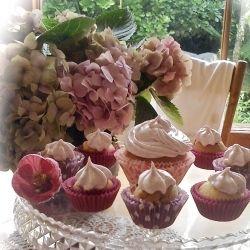 Pink Plum Cupcakes