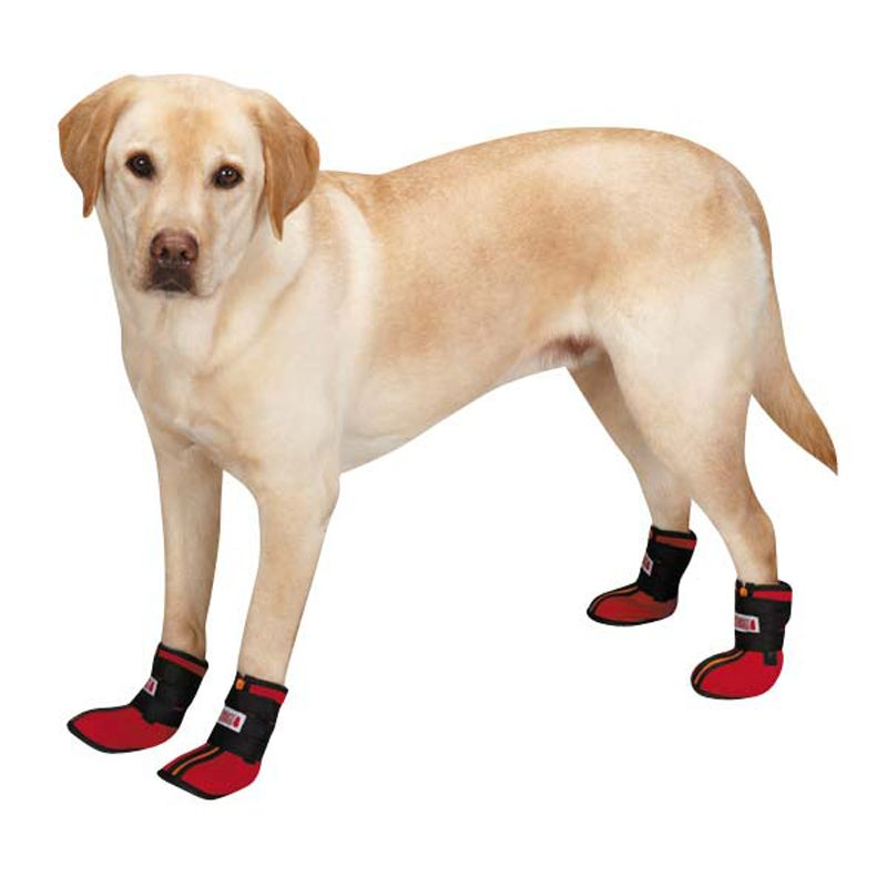 Kong High-Top Neoprene Dog Boots -  https   barkavenuebycucciolini.ca product kong-high-top-neoprene-dog-boots  c5a90f9f2668