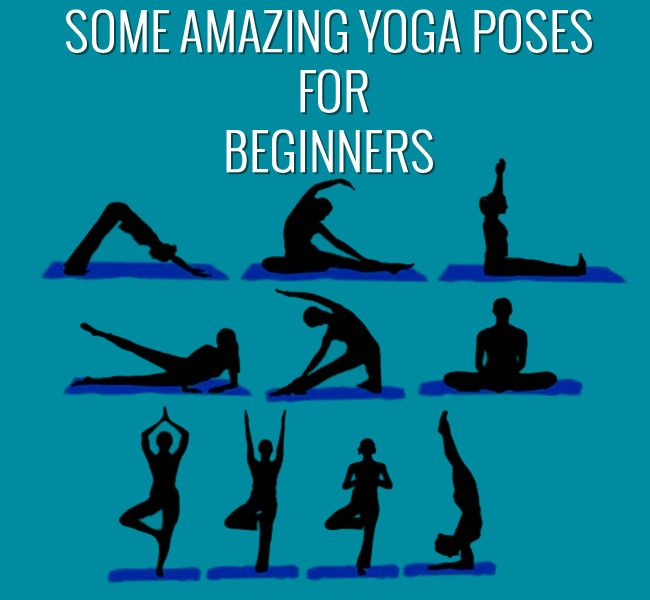 Some Amazing Yoga Poses For Beginners - Pro Body Line