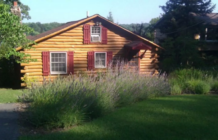 These 7 Awesome Cabins In New Jersey Will Make Your Stay In Nature  Unforgettable