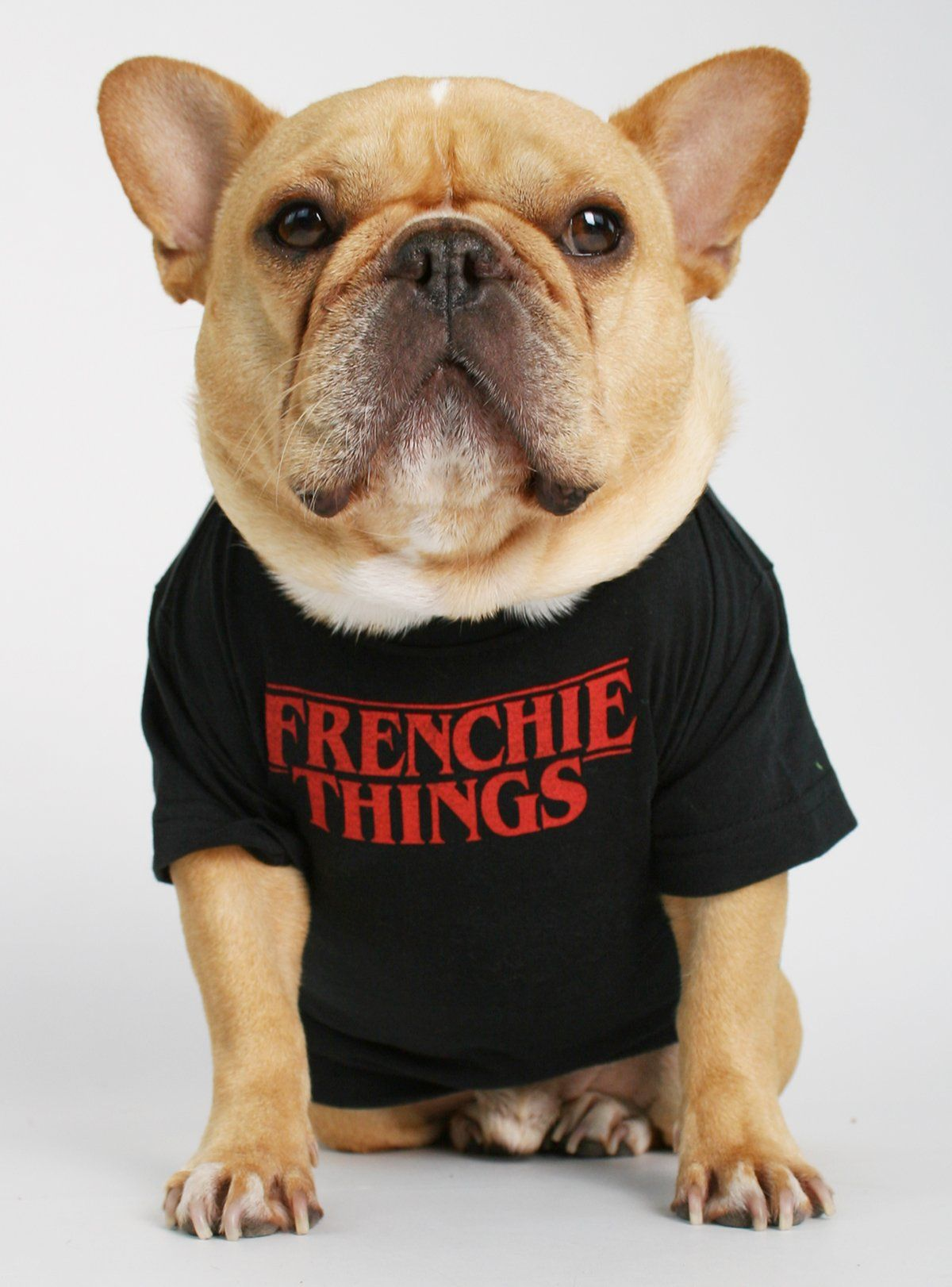 Frenchie Things Dog Tee Dog Shirt Dogs Tee Bulldog
