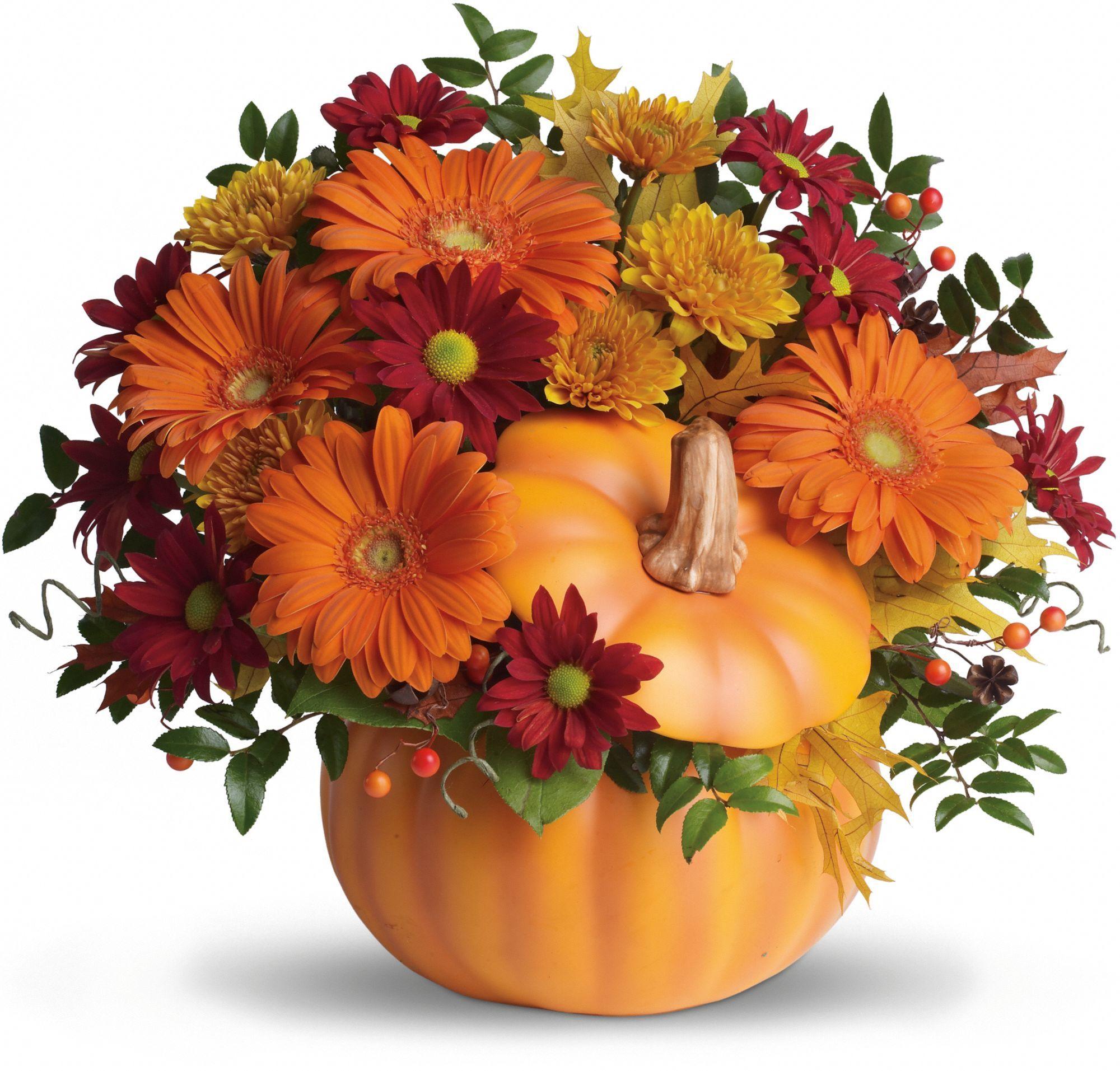 Teleflora's Country Pumpkin bouquet Thanksgiving flowers