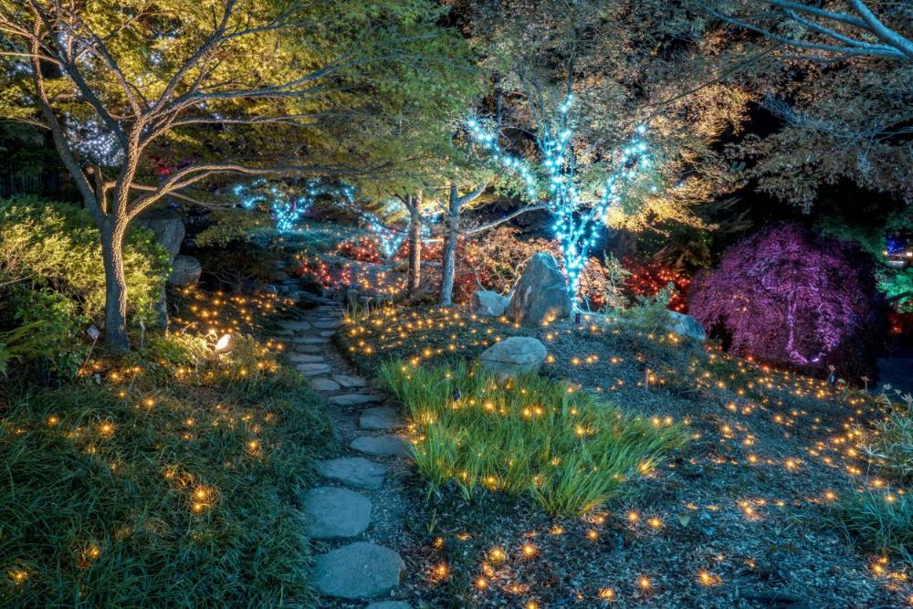 Dominion GardenFest of Lights at Winter garden