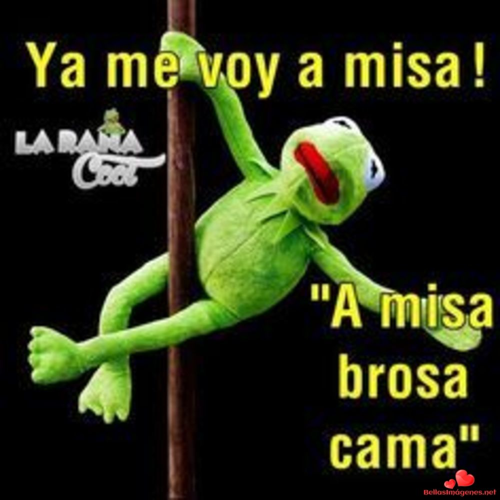 Buenas Noches Para Compartir Whatsapp 47 Funny Memes Funny Phrases Funny Quotes
