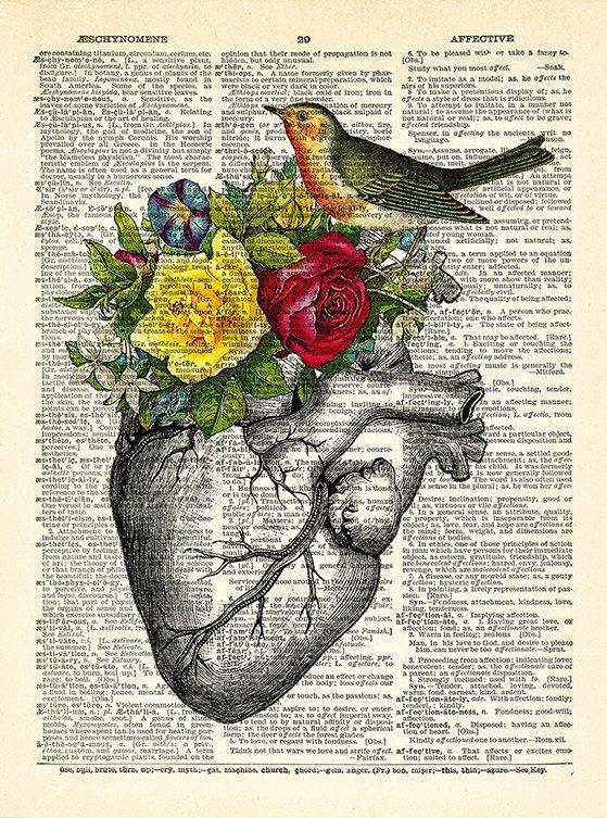 Anatomy Heart Bird Art Print Rose Flowers Human Heart Poster Z Art