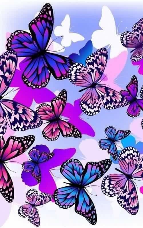Pin by Dianne Zelenak on Gif pics | Butterfly wallpaper ...