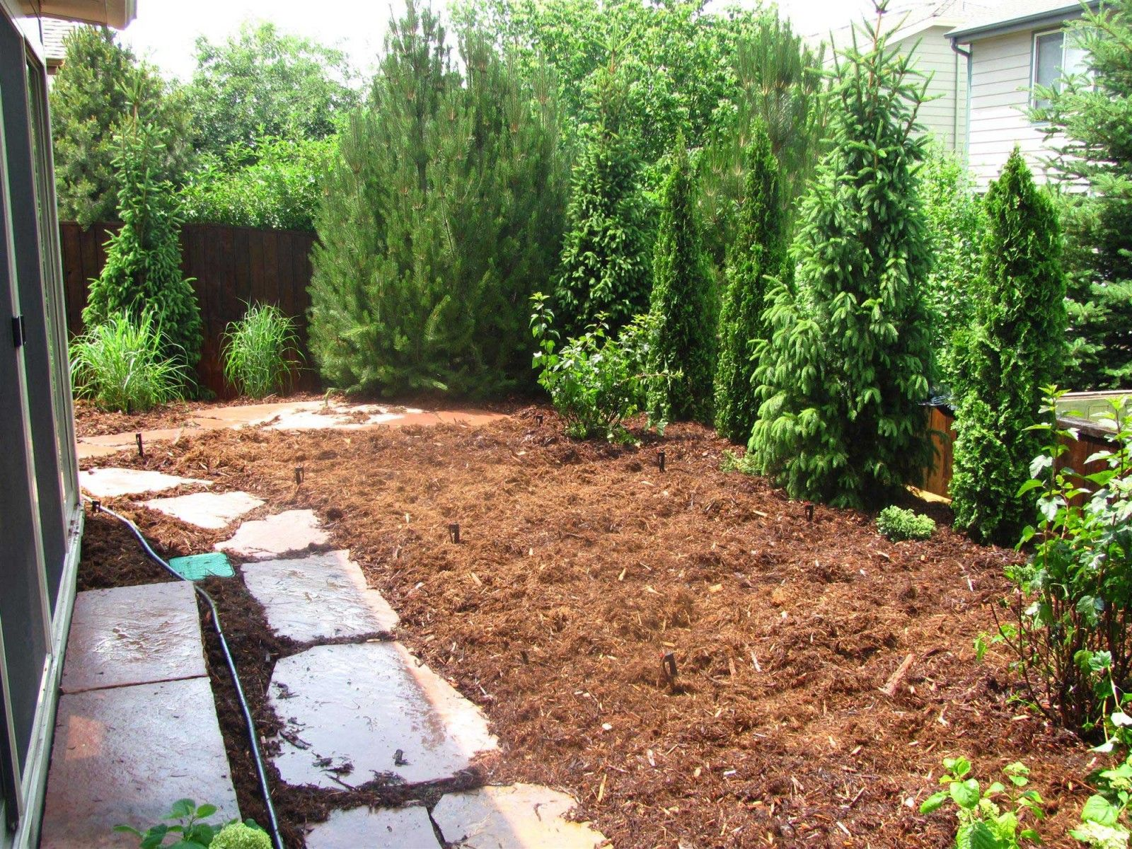 Backyard landscaping for privacy gunbarrel colorado for Garden design ideas for privacy