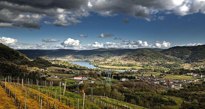 Selo Reserva - O renascimento dos vinos de España  https://www.seloreserva.com.br/artigo/o-renascimento-dos-vinos-de-espana-140
