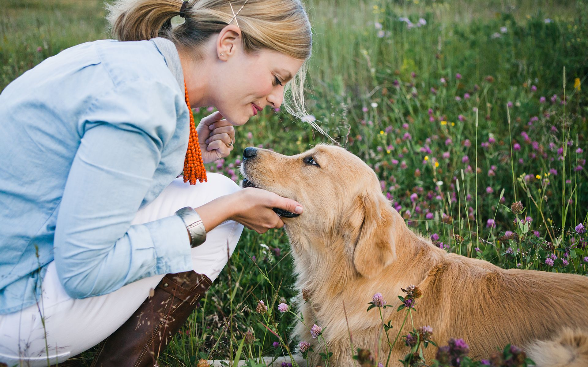 Home Boulder Denver Pet Photographer Allison Mae