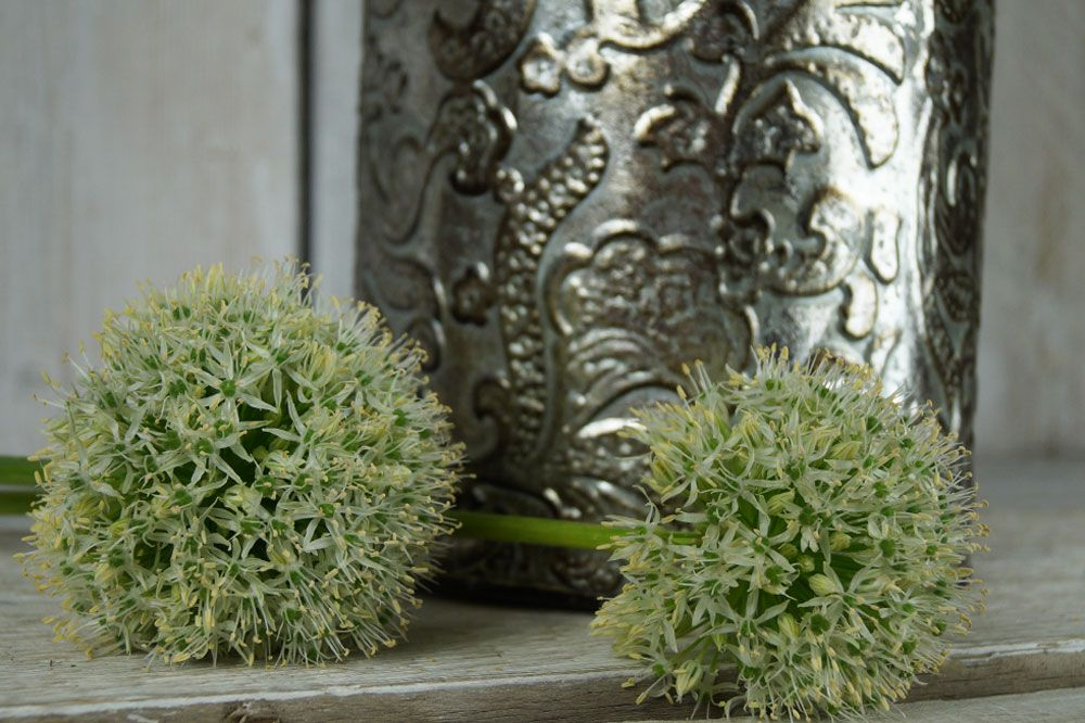 Beautiful new range of decorative zinc vases which have a Persian feel. The allium is quite nice, too. http://www.thesatchvillegiftcompany.co.uk/products/new-for-autumn-2015