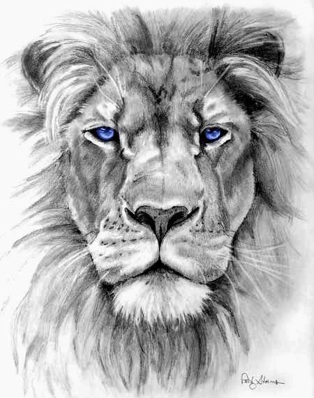 leão olho azul tattoo pinterest leao desenho tatuagem leão e