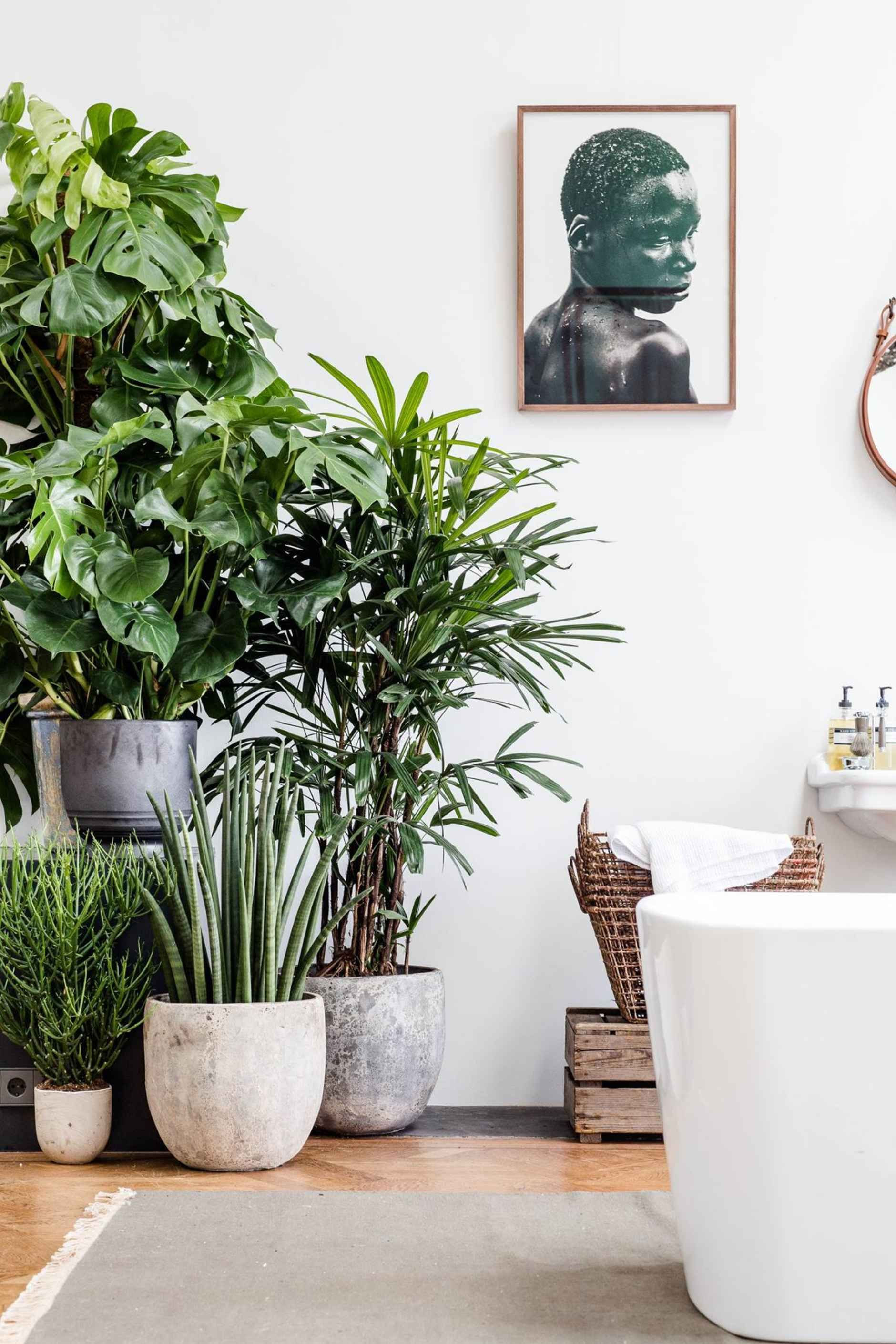 Cool Bathroom Plants a stunning amsterdam loft guaranteed to make you a bit jealous