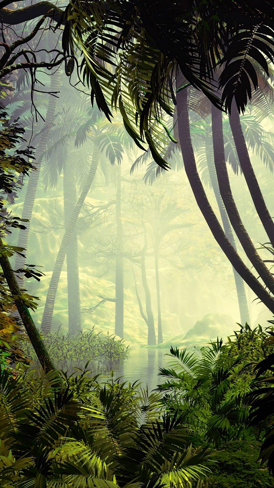 Palm Trees Trees Jungle Fog Wallpaper Jungle Wallpaper Forest Wallpaper Nature Wallpaper