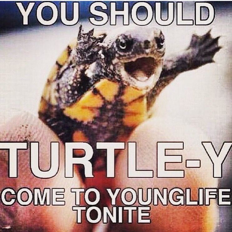 Pin By Robb Schreiber On A Young Life Wyldlife Meme Pics Yl Club Ideas Instagram Posts Young Life Young Meme Pictures