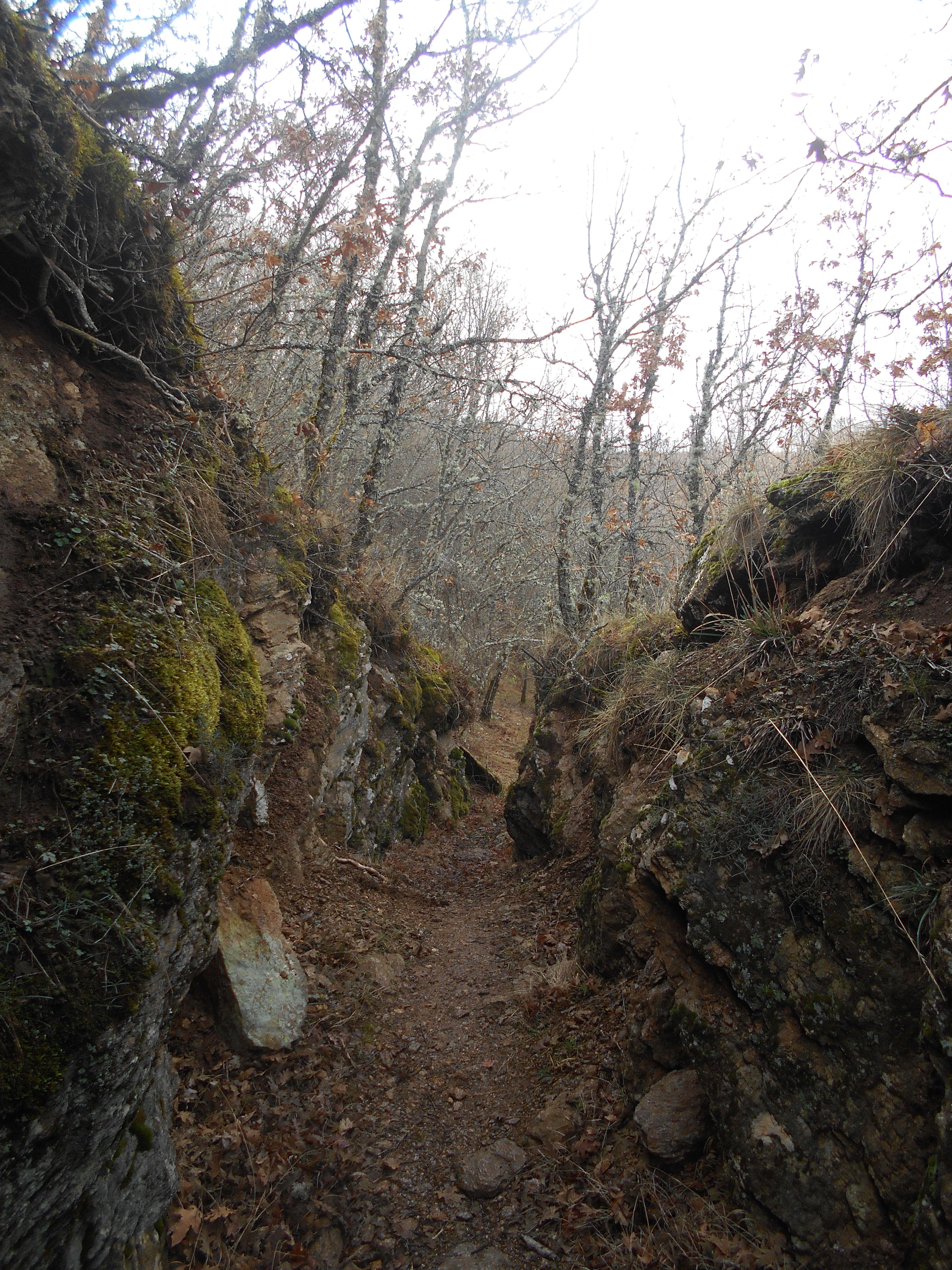Ruta del Desfiladero del Río Riaza. Ribera izquierda.  1/2016