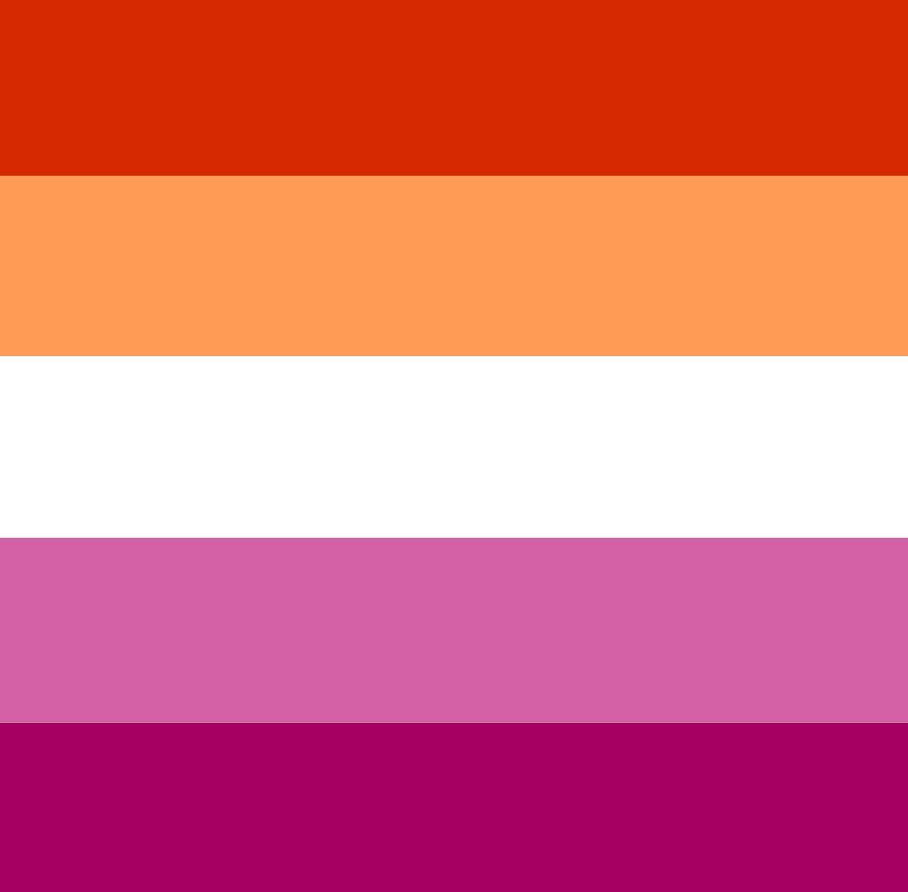 New Lesbian Flag Horizontal By Lunathewereauk On Deviantart Lesbian Flag Pride Flags Lesbian Pride
