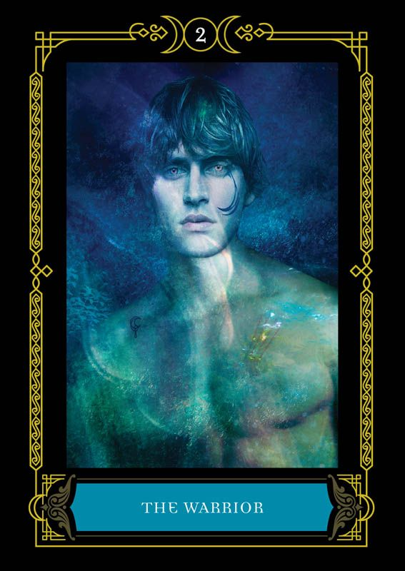 Warrior Colette Baron Reid Oracle Cards Founder Of Oracle School House Of Night Oracle Cards Divination Cards