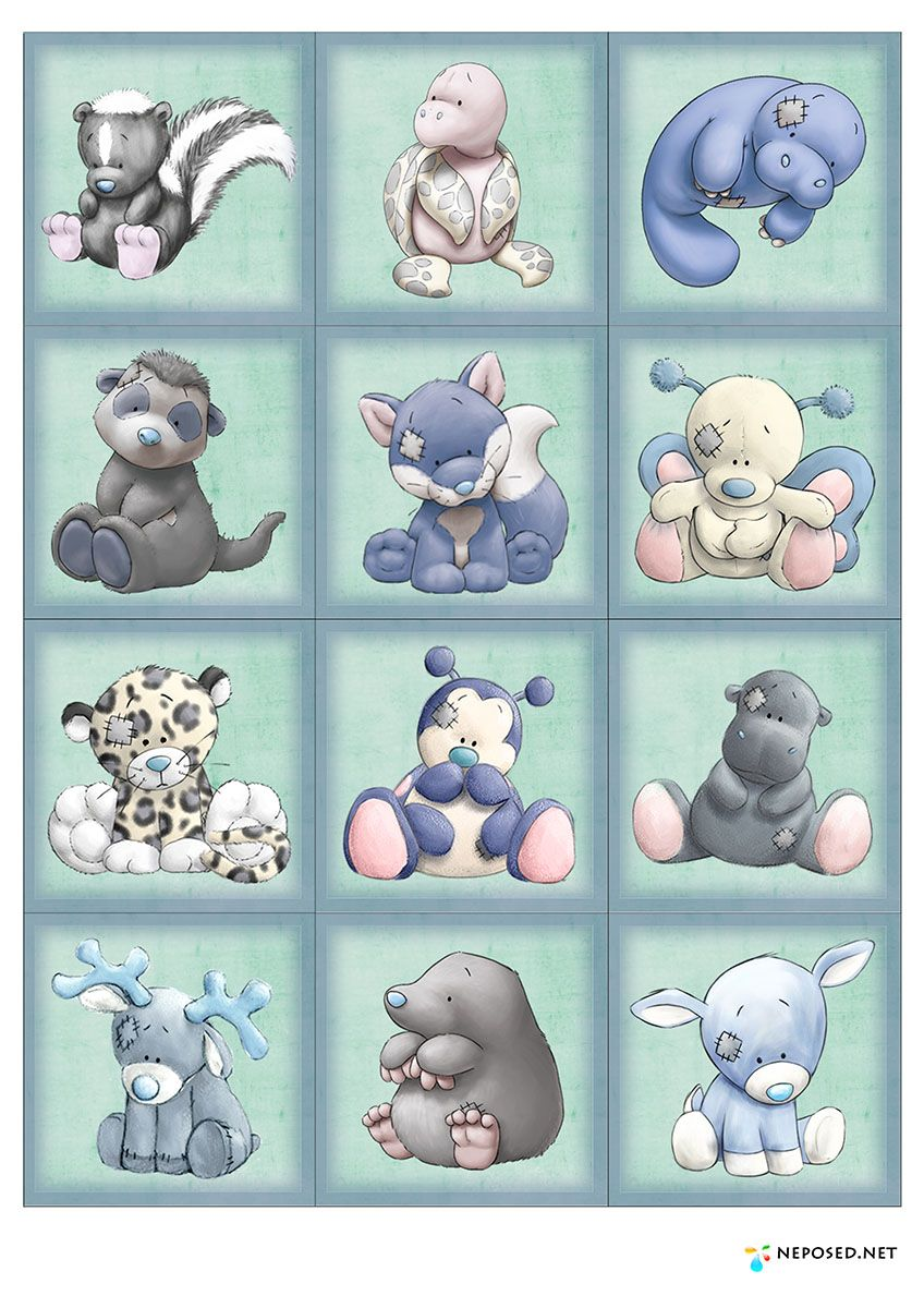 My blue nose friends animal cake pinterest blue nose for What kind of paint to use on kitchen cabinets for teddy bear wall art