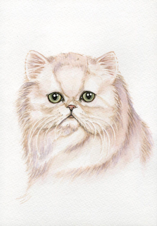 Persian Cat Paintings 5x7 Print From Original Watercolor Painting Persian Cat Drawing Cat Painting Cat Portraits