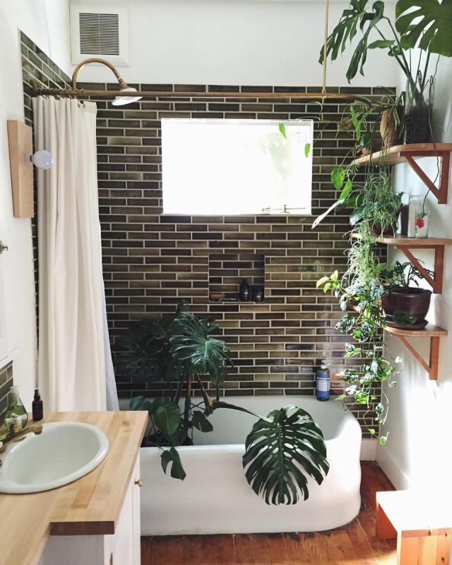 bad mit pflanzen urban jungle badezimmer wohnen mit pflanzen ... - Pflanzen Für Badezimmer