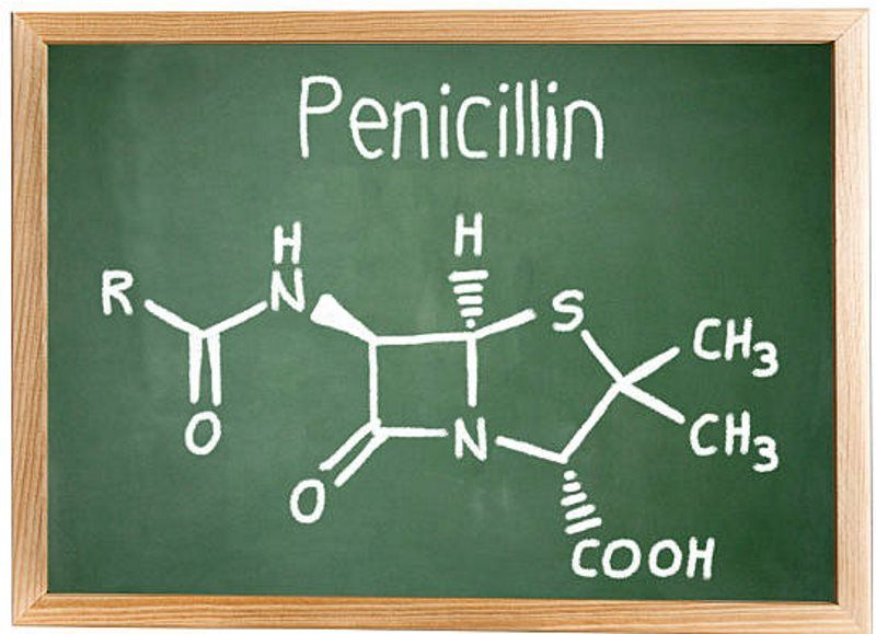 How To Make Penicillin At Home Just In Case Shtf Self Sufficiency Before It S News Penicillin How To Make Survival