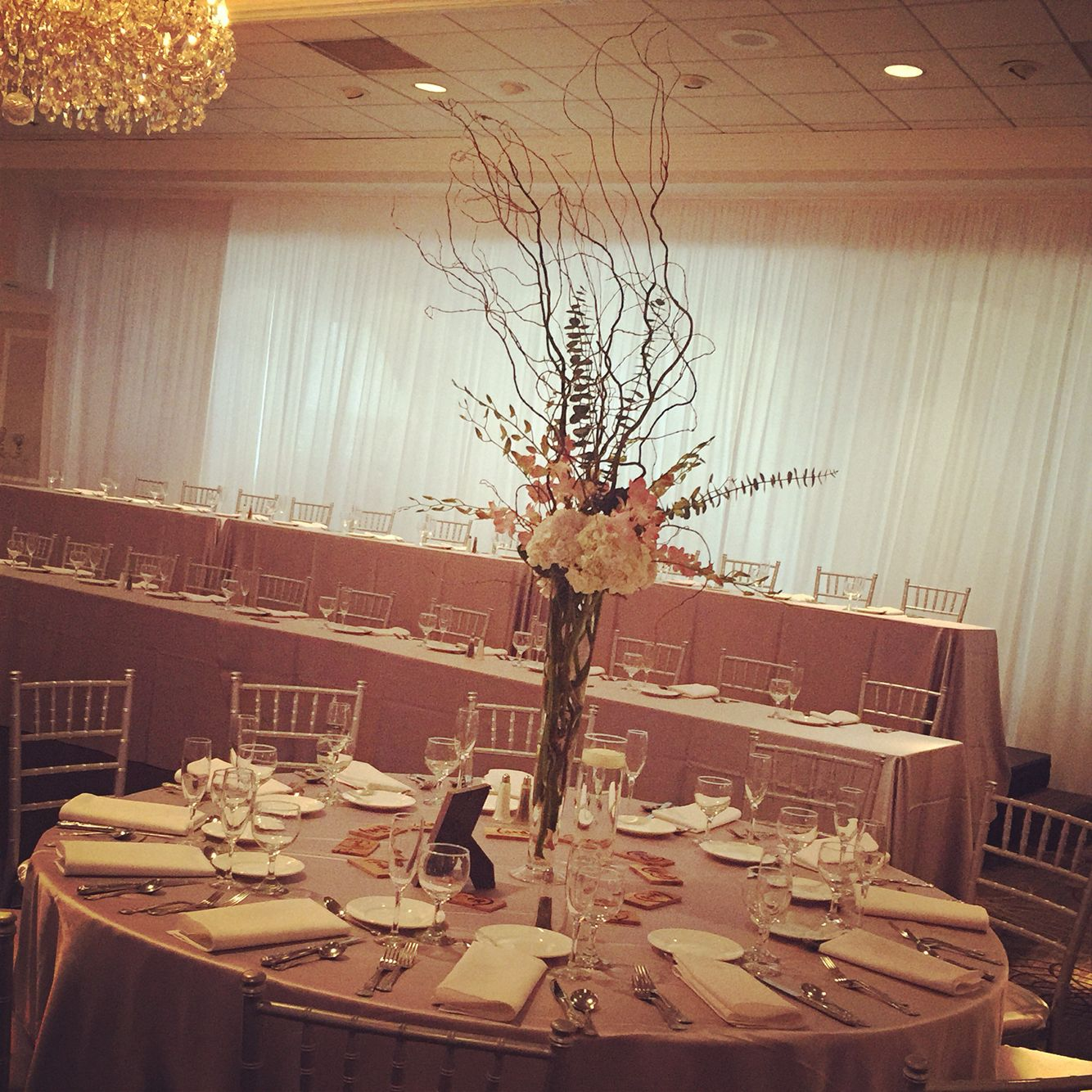 The tall centerpieces consisted of tall curly willow white the tall centerpieces consisted of tall curly willow white hydrangeas and blush dendrobium orchids and eucalyptus in pilsner vases reviewsmspy
