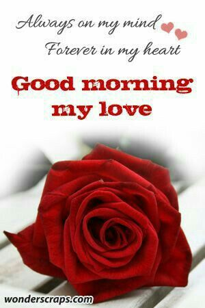 My Precious Love Morning Love Morning Sweetheart Good Morning Love